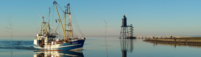 Headerbild für den Bereich Fischerei